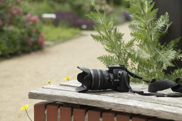 Workshop Gartenfotografie in Theorie und Praxis